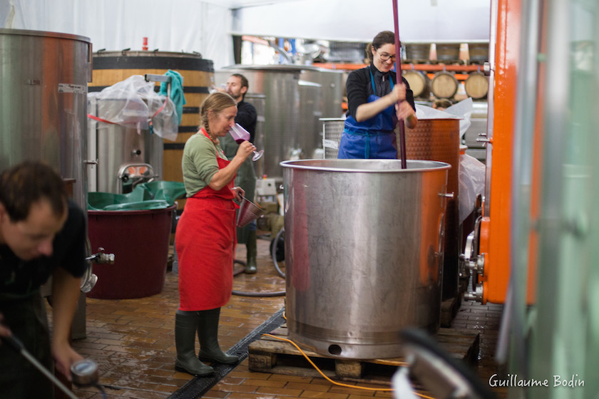 MT Chappaz tasting the fermenting wine and Sarah punching down