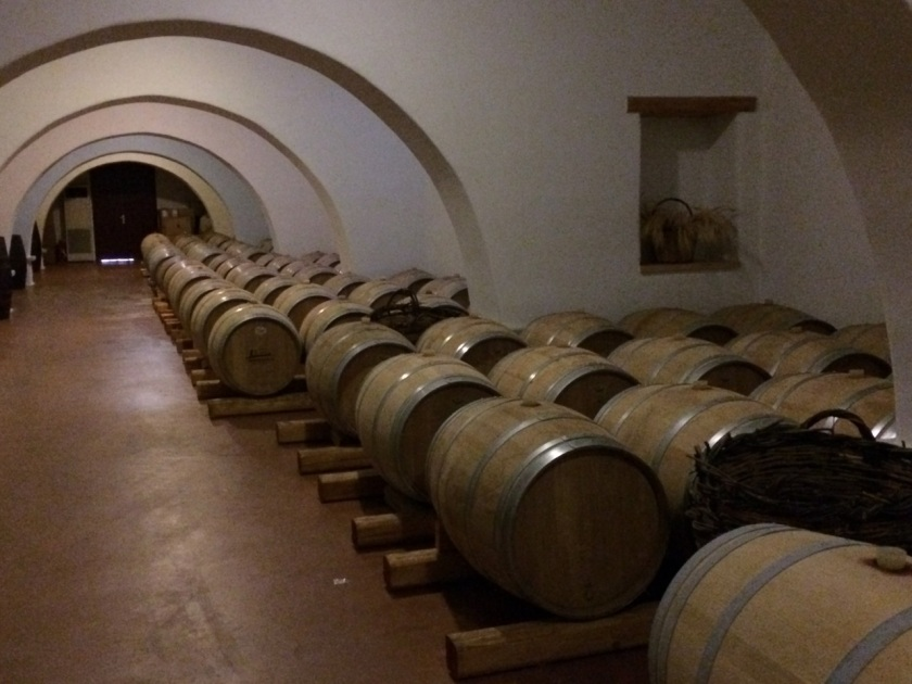 Barrels in the cellar of Moraitis Winery, Paros, Greece